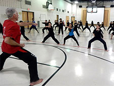 Hamilton, Ancaster, and Stoney Creek Martial Arts Gallery